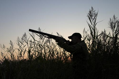 Senate Strikes Down Sportsmen's Act of 2012